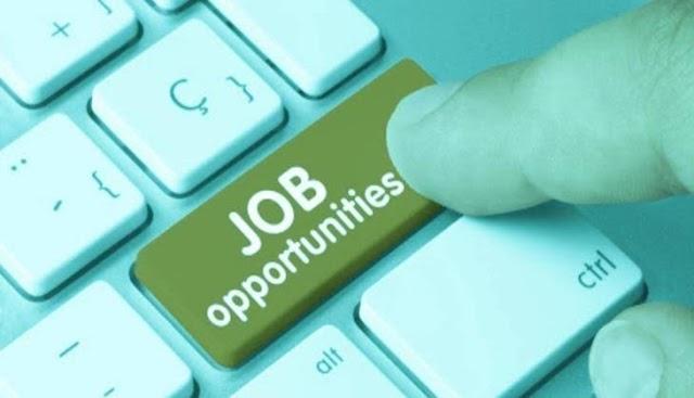 JK Higher Education Mega Jobs Recruitment 2021 | Check And Apply
