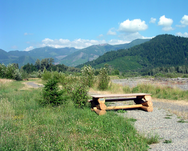 The Deming Homestead Eagle Watch Park, located on the banks of the Nooksack River, is Whatcom County's only public eagle-watching park.Credit: Christine Jenkins