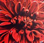 Rouge comme une pivoine.  40 x 40 cm      Mai 2015