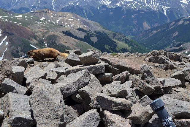 rocks at the top of Wetterhorn Peak