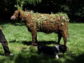 idée : animaux végétalisés