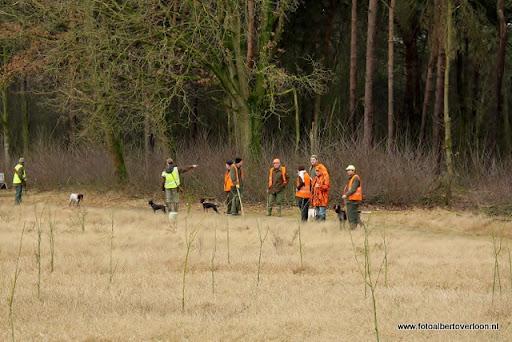 vossenjacht in de Bossen van overloon 18-02-2012 (48).JPG