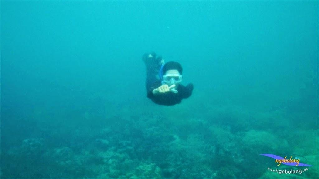 pahawang 12-14 des 2014 pentax 03