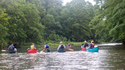 On the Lamington as the river spreads out near the end. Rain is over and most of us didn't want the trip to be over.