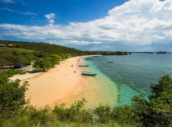 Berwisata ke Pantai Pink, Lautan Biru Dibalut Pantai Merah Muda