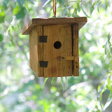 birdhouse_MG_8397-copy.jpg