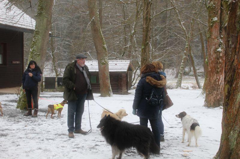 01. Januar 2016: Neujahrswanderung ins Waldnaabtal - IMG_1537.JPG