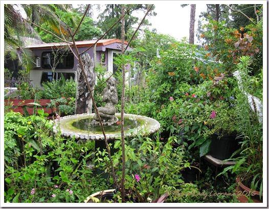 06-09-jungle