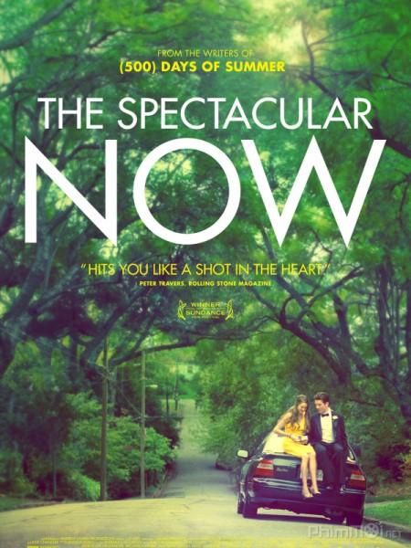 Thực tại hoàn mỹ - The Spectacular Now 2013