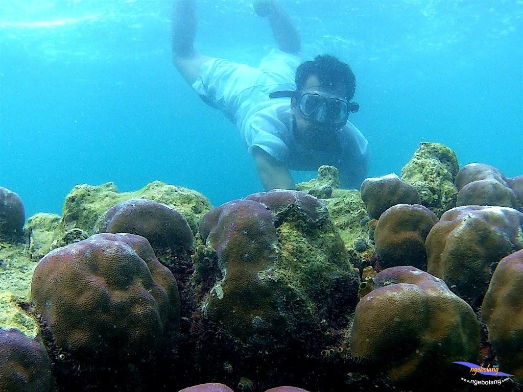 pulau pari 050516 GoPro 08