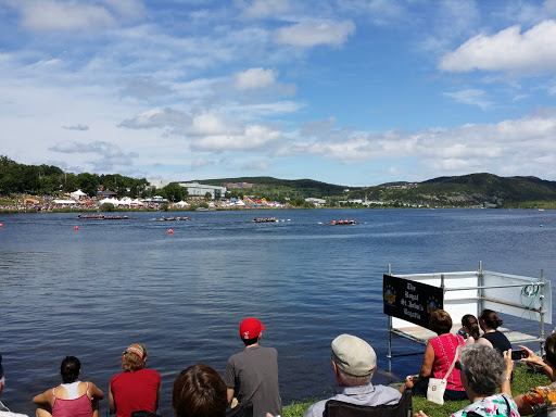 Royal St John's regatta, 2015. Newfoundland and Labrador History Comes Alive at The Rooms
