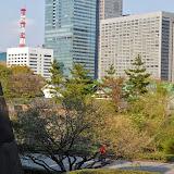 2014 Japan - Dag 11 - jordi-DSC_1011.JPG