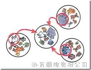 哆寶兒童版_玩法4