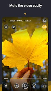 Video Player & Media Player All Format for Free 6