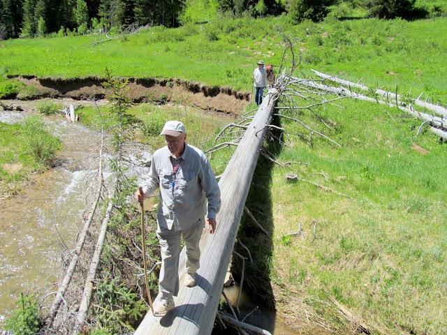Jim crossing Lowry Water on a fallen tree