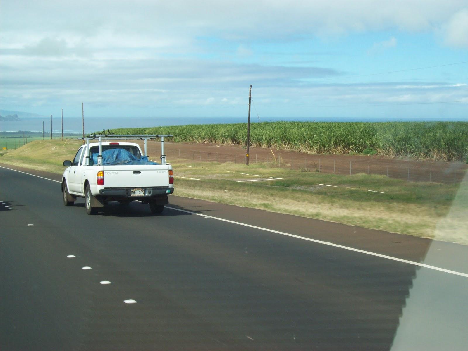 Hawaii Day 8 - 100_8153.JPG