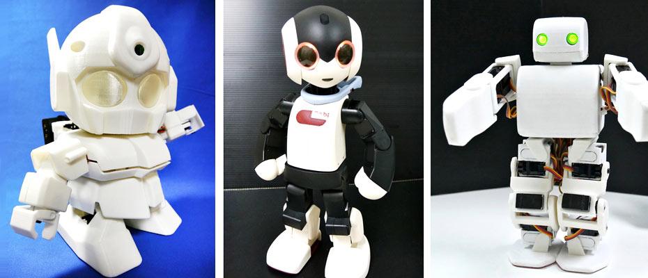 ROBOT �����H