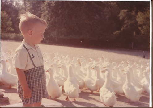 David with the ducks