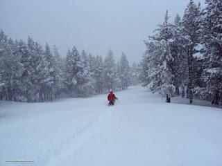 DSC01418 - Nevando el sábado, paraiso el domingo.