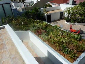 Toiture végétalisée 100% sphaigne réalisé aux caraibes sur l'ile de saint barth, les toits végétaux apportent énormement de fraicheur aux batiments ce qui évite les clims .