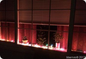 Window lights 11242017