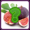 Tebak Menebak Nama Buah buahan icon