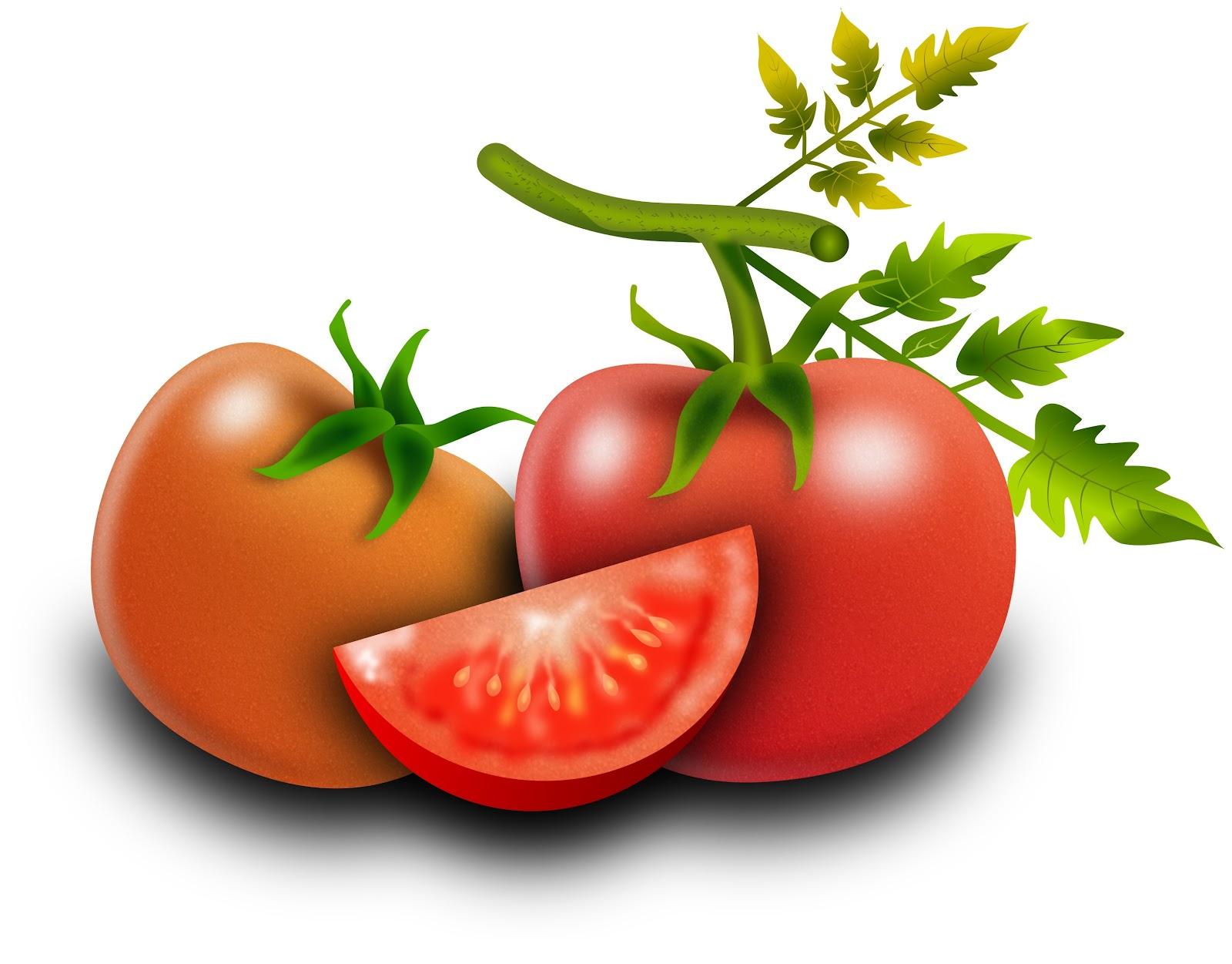 [tomates_280120171%5B4%5D]