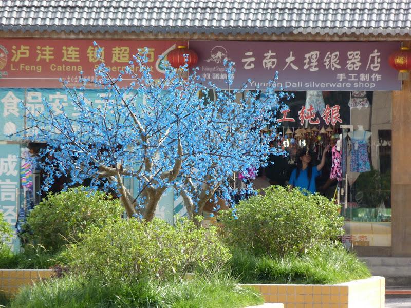CHINE SICHUAN.KANDING , MO XI, et retour à KANDING fête du PCC - 1sichuan%2B1675.JPG