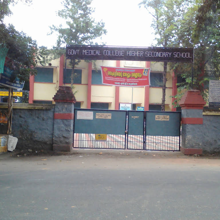 Government Medical College Higher Secondary School - School