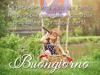 Buongiorno frase motivazionale la perseveranza è ciò che rende l'impossibile possibile il possibile probabile e il probabile certo.png