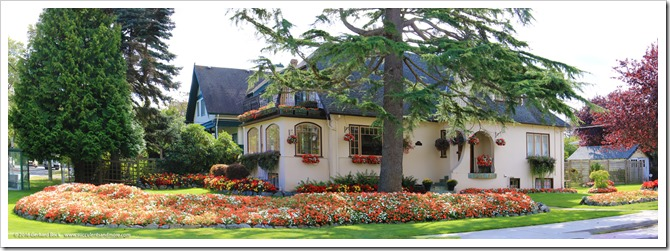 Wednesday Vignette: Victoria, BC tulip house in the summer