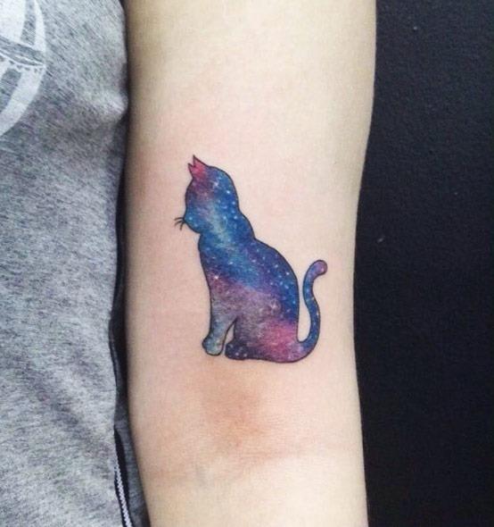 este_gato_csmico