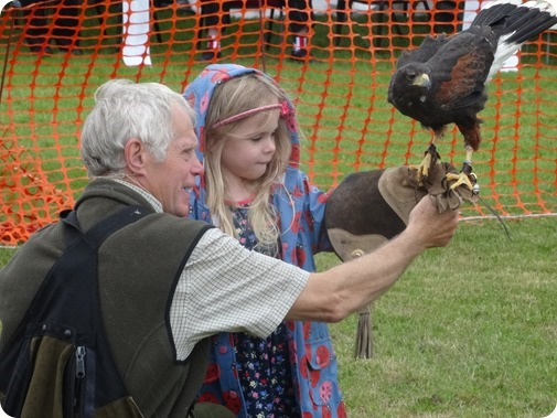 Vale Royal Falconry