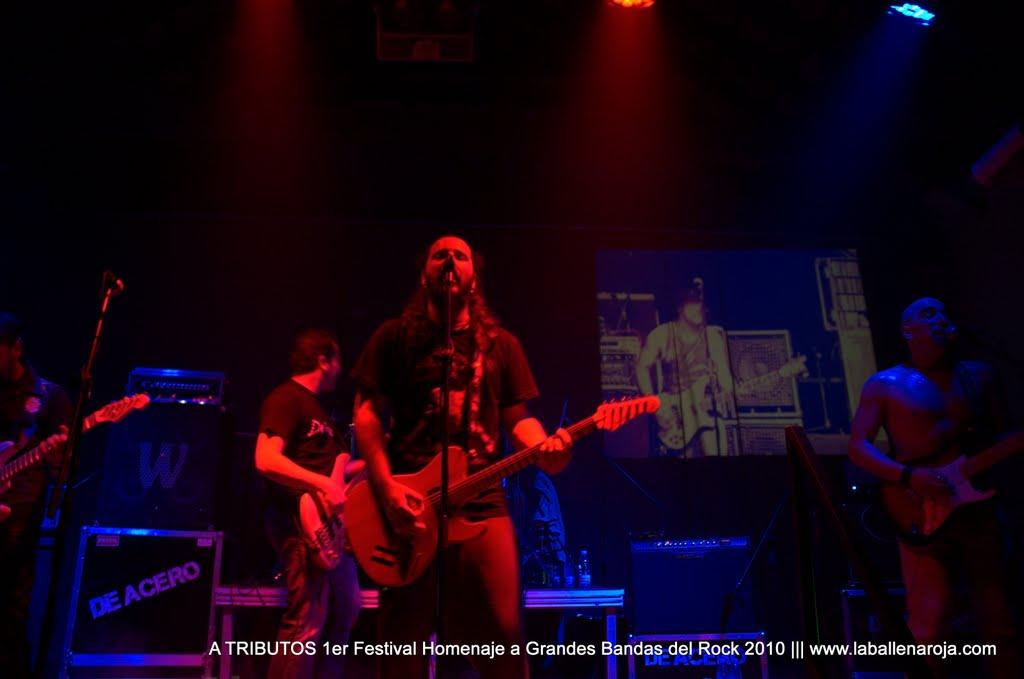A TRIBUTOS 1er Festival Homenaje a Grandes Bandas del Rock 2010 - DSC_0135.jpg