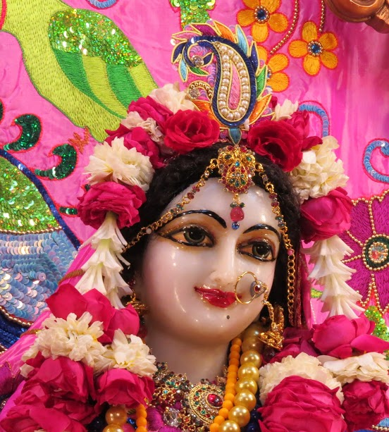 ISKCON Vallabh vidhyanagar Deity Darshan 19 jan 2017 (16)