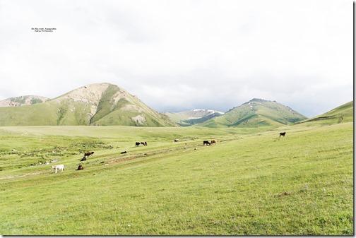 Kyrgyzstan34