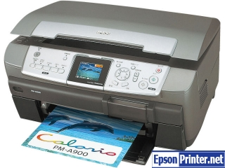 How to reset Epson PM-A900 printer