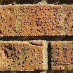 Actual brick treated with A-Tech Masonry and Brick Sealer.  Water beads on the surface of bricks after application of A-Tech Masonry and Brick Sealer. The brick traction, texture and color are unchanged.