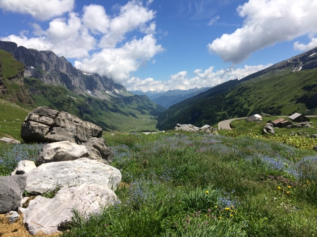Switzerland is expensive! But, we can't complain too much about it since we mostly had the kind hospitality of Swiss friends who let us pamp for free, and even fed us many times. We also reduced our expenses by fuelling up with diesel and stocking up o...