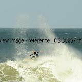 _DSC0267.thumb.jpg