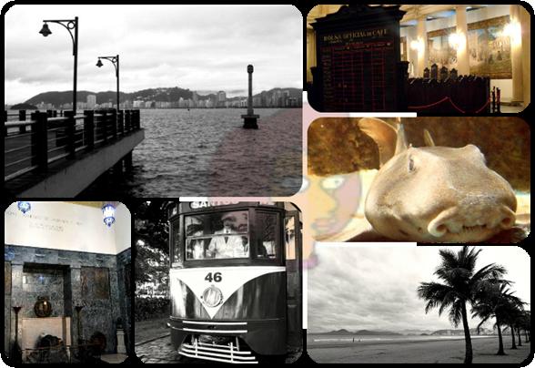Deck do Pescador (Ponta da Praia), Bolsa do Café (Centro), Tubarão-porco do Aquário (Ponta da Praia), Panteão dos Andradas (Centro), Bondinho Turístico da Praça das Bandeiras (Gonzaga) e Praia do Gonzaga - Santos/SP