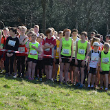 Meanwood Valley Senior & Junior Trail 2013