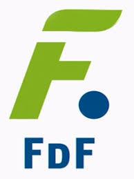 fdf en directo online gratis 24h por internet
