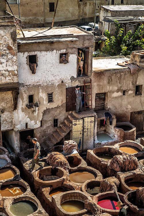 Dye Pits of Fès el-Bali (Old Fez) The medina of Fès el-Bali (Old Fez) is an experience that takes no...