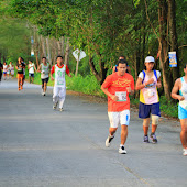 9-th-Turtle-Fun-Run-2013.jpg