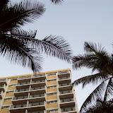 Hawaii Day 3 - 100_6820.JPG