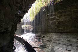 We picked the perfect day to go... a light drizzle outside sends thousands of miniature waterfalls down into the gorge.