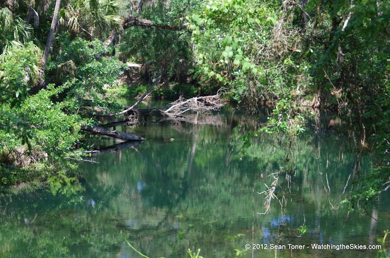 04-04-12 Hillsborough River State Park - IMGP9682.JPG