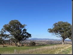 180517 002 Road to Cowra