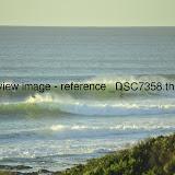 _DSC7358.thumb.jpg